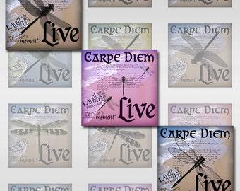 Dragonflies Carpe Diem Instant Download for Glass Resin Scrabble Tile Pendants Digital Collage Sheet Square 2, 1 Inch Images (S-112)
