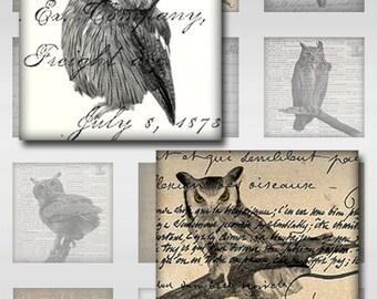 Owls Ephemera Vintage Digital Instant Download Resin Glass Scrabble Tile Pendants Square Jpeg 1 and 2 Inch Images (S-25)