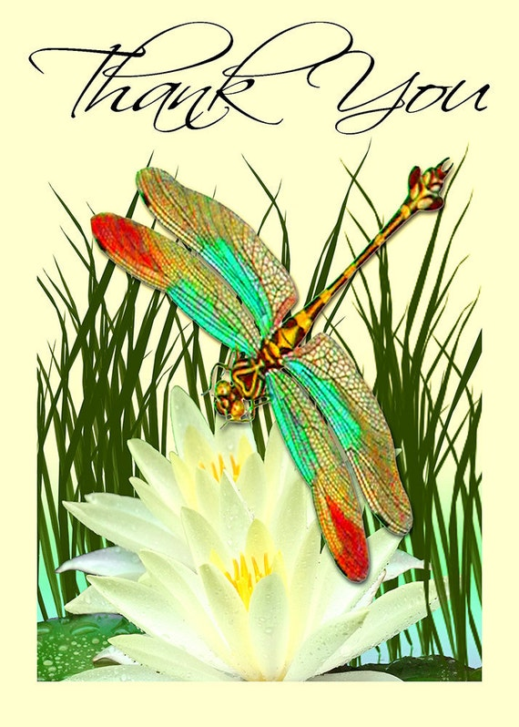 Thank You Card Dragonfly and Water Lily Digital Image Instant Download 5x7 Inch JPEG (NC-4)