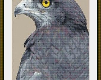 Cross Stitch PDF Pattern - Hawk Bird