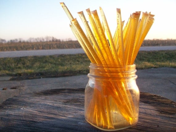Honey Sticks -Pure Summer Honey - 25 honey filled straws