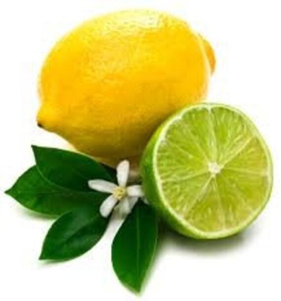 Cool Mint Lemonade Sugar Body Polish 8 oz.