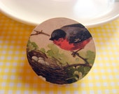 Wood Pin Brooch - Robin and Eggs in the Nest - Decoupage Victorian Bird Nature Garden Woodland