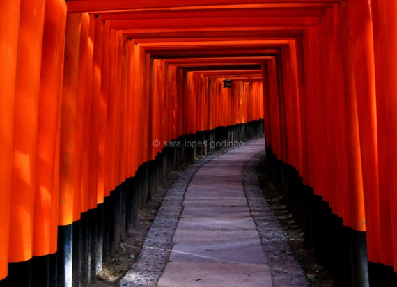 through the red tunnel original photography // 8x12 japanese temple red torii