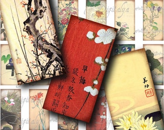 Asian Flora (2) Digital Collage Sheet - Botanical Asia 30 different Dominos 1x2 inch for jewelry and craft projects - See promo Offer