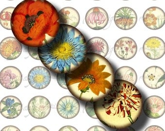 Herbarium (1) Digital Collage Sheet - hand colored botanical illustrations - Circles 1inch - 25mm or smaller - Buy 3 Get 1 Extra Free