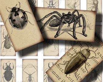 FLYING & CRAWLING INSECTS (1) Digital Collage Sheet - Drawings on vintage Paper 30 Domino 1x2 inch - See Promo Offer