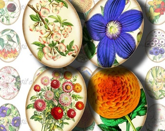 Flower Festival (1) Digital Collage Sheet - Oval 30x40mm or 18x25mm or smaller size available - Buy 3 Get 1 Extra Free