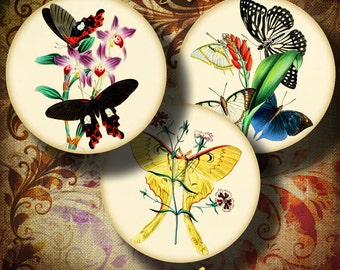 VINTAGE EXOTIC BUTTERFLIES - Digital Collage Sheet  for Pocket Mirror - Circles 2.5 inch - 63mm - Buy 3 Get 1 Extra Free - Instant Download