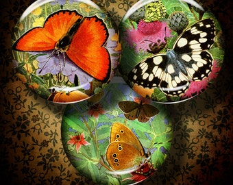 BUTTERFLIES IN NATURE - 2 Digital Collage Sheets - Circles 2.5 inch - 63mm Pocket Mirror - Buy 3 Get 1 Extra Free - Instant Download
