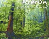 Evening Mist by Kieron relaxation, soft music FREE SHIPPING