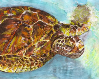 turtle watercolor print signed by artist Stephanie Kriza