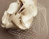 Custom Listing for Bronagh Miranda Lambert-inspired Blusher Birdcage Veil