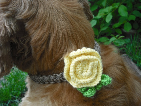 Floral Dog Collar Accessory, Pale Yellow & Green Bloom, Custom Colors Available