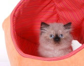 Cat Ball Modern Kitty Cave Bed in Tangerine Microfiber