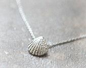 Scallop Seashell Necklace
