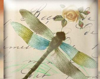 Dragonflies 1 inch squares-Dragonflies digital collage sheet-Printable dragonflies-Printable dragonflies-Glass pendants-Key chains-Magnets