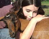 Handcrafted Photo Greeting Card Pet Photography Card Girl Gives Goat Big Hug