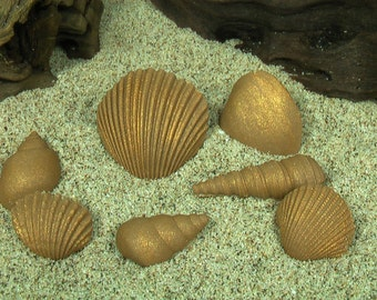 Gum Paste Gold Chocolate Sea Shells