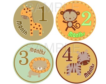 FREE GIFT Baby Month Stickers Baby Monthly Photo Stickers Month Sticker Monthly Baby Milestone Stickers Monthly Bodysuit Sticker Baby Shower
