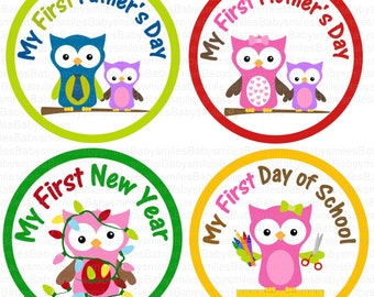 First Holiday Owl Girl Photo Stickers Monthly Baby Bodysuit Stickers, Baby Stickers Baby Girl Owl Holiday Milestone Stickers Baby Shower