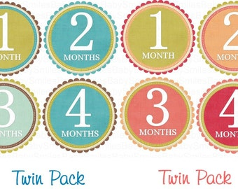 FREE GiFT Monthly s TWIN PACK Baby Month Stickers Baby Girl Month Stickers Monthly Bodysuit Stickers Monthly Milestone Stickers Baby Sticker