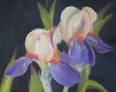 R E S E R V E D!!  Blooming Irises - Original Oil Painting