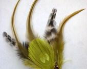 Peridot Peacock with multi feathers Hair Fascinator, clip  OOAK