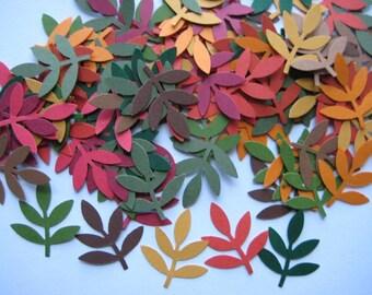 100 Autumn Fern Leaf Frond punch die cut embellishments E874