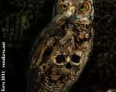Skull Owl Gothic Print Steampunk 13x19 Skelanimal Tattoo halloween Fine Art Canvas Print  Kutna Hora  horror Vena Kava