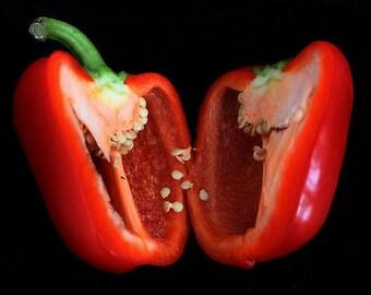 Scarlet Stuffer Sugar Bell Peppers
