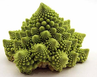 Breaking Physics Cauliflower