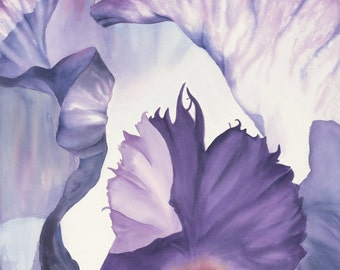 Large Print Watercolor Purple Iris Modern 20x16 Print Abstract Watercolor georgia O'keefe Inspired by Peggy Martinez
