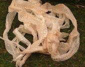 Grab Bag of Imperfect Shed Snake Skins
