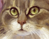 Maine coon type cat is subject of small oil painting. Commissions available