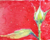 """Language of Flowers Original ACEO White Rosebud """"A Heart Unaquainted with Love""""  watercolor"""