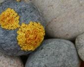 Common orange lichen on a grey wool pebble - Xanthoria parietina brooch