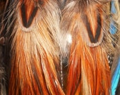 blazing.wings ~ Pheasant Hen & Rooster Hackle Feather Earrings Bound with Bison Leather