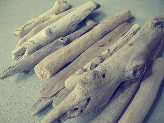 California Ocean Beach Driftwood