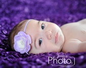 Newborn Baby Headband - Photography Prop - Small lavender flower on a skinny headband