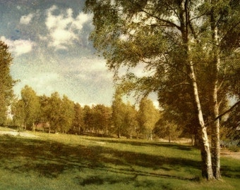 Rustic Landscape in Sweden - Nature Photography - Vintage Inspired Wall Decor - 6x10