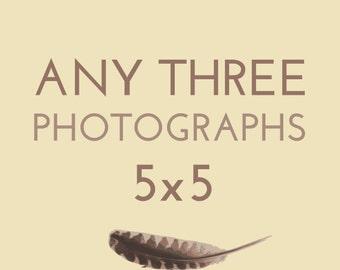 Set of any THREE 5x5 photographs by Kanelstrand