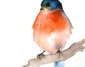 Dark Blue and Orange Bird - Small Original Watercolor Painting