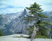 Yosemite National Park Landscape Photograph