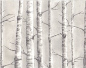 Original Birch trees