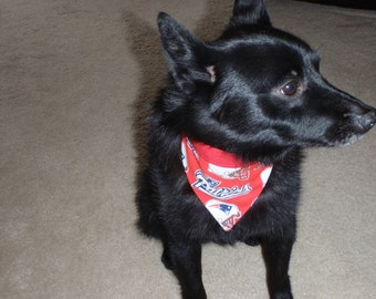 Sports Dog Neckerchief