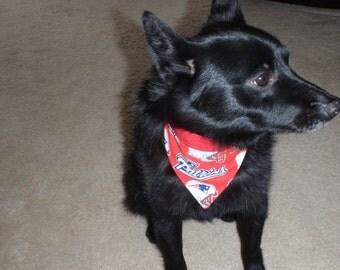 Sports Dog Neckerchief