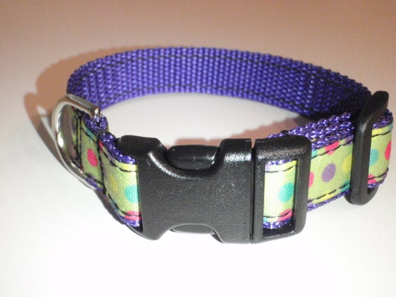 Candy Dot Dog Collar