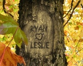 Personalized Tree Carving on Photo - Fallin' In Love - (JPEG) Digital IMAGE for YOU to print-Your names carved into this tree image