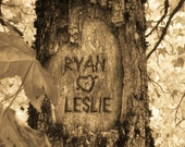 Personalized Tree Carving on Photo -  Fallin' In Love (Antique Sepia) - (JPEG) Digital IMAGE for YOU to print-Your names carved on this tree